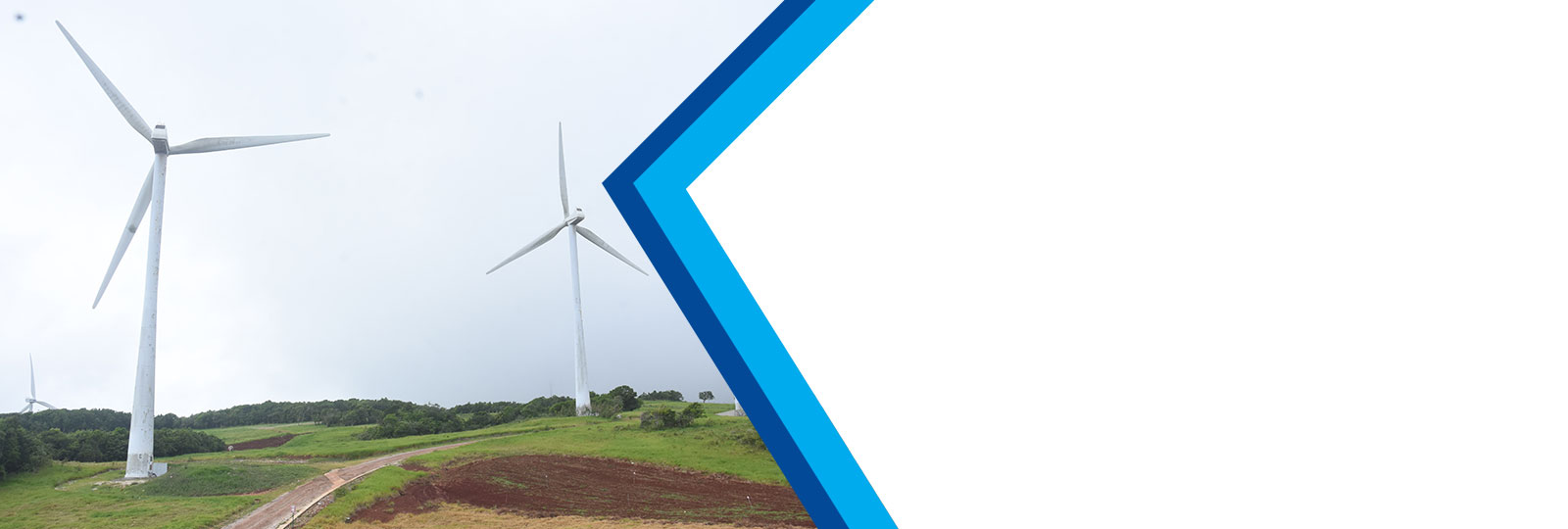 How to apply for wigton windfarm ipo